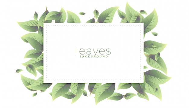 Projeto de fundo retangular de folhas verdes