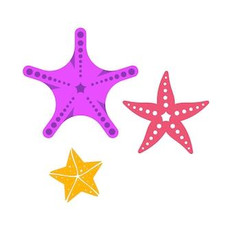Projeto de ilustração vetorial de modelo de ícone de estrela do mar