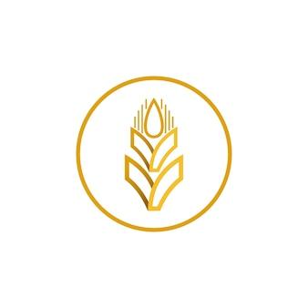 Projeto de logotipo de vetor de trigo