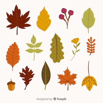 Projeto de mão desenhada de coleção de folhas de outono