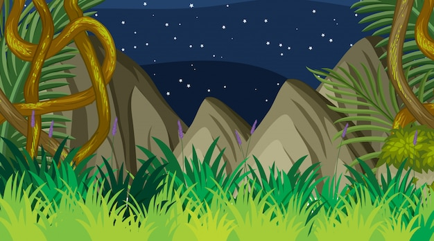 Projeto de plano de fundo da paisagem da floresta à noite