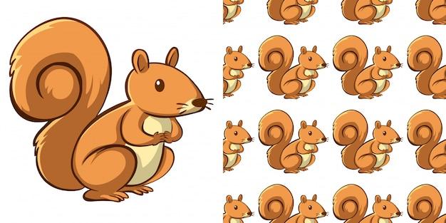Projeto de plano de fundo sem emenda com esquilo bonito