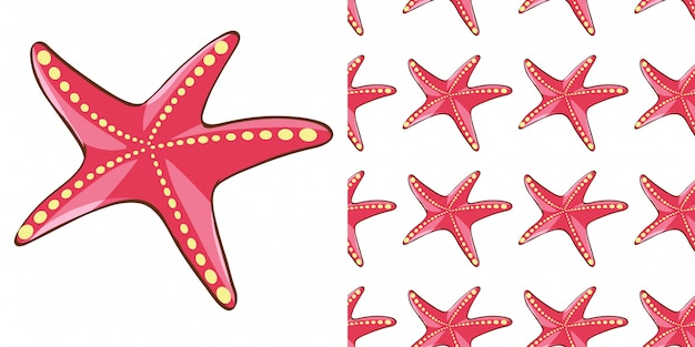 Projeto de plano de fundo sem emenda com estrela do mar vermelha