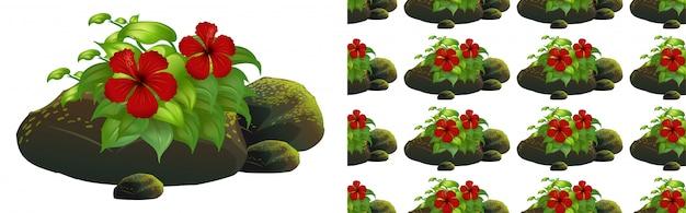 Projeto de plano de fundo sem emenda com flores de hibisco vermelho em pedras de musgo