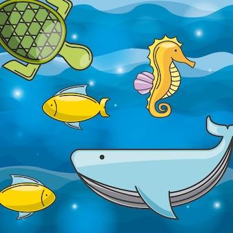 Projeto do conceito do mar