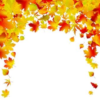 Projeto do fundo do outono.