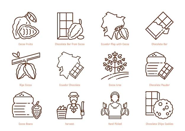 Projeto do ícone da linha de cores de origem do cacau equador com mapa do equador, frutos do cacau, árvore, feijão e colheita com palhetas manuais. Vetor Premium