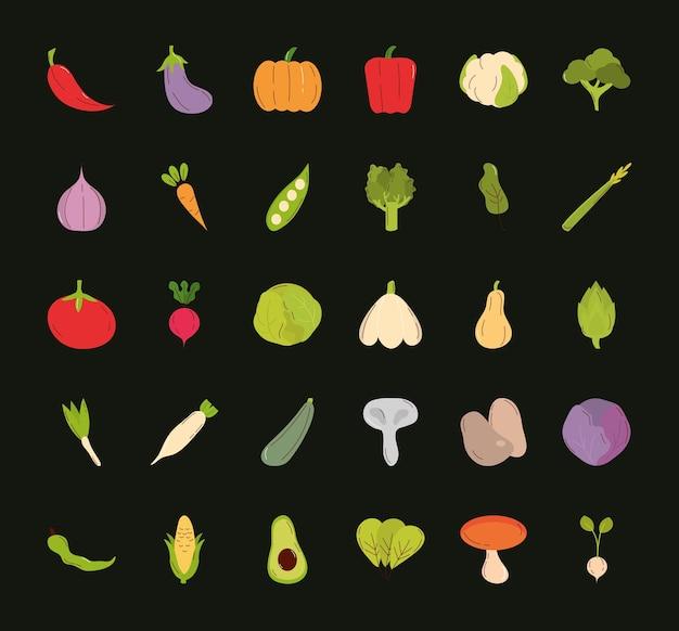 Projeto do pacote do ícone de vegetais, ilustração do tema comida orgânica e saudável