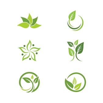 Projeto do vetor do elemento da natureza da ecologia da folha da árvore verde