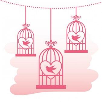 Projeto dos pássaros do amor