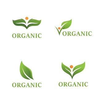 Projeto paisagístico jardim planta natureza e logotipo do vetor ecologia