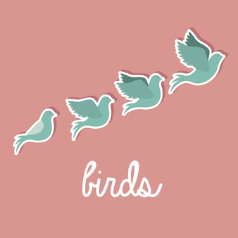 Projeto pássaros