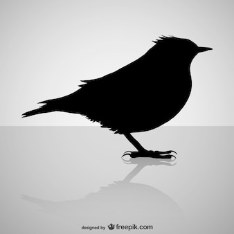Projeto silhueta do pássaro