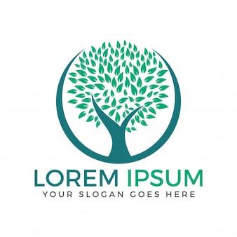 Projeto verde do logotipo do vetor da árvore do círculo.