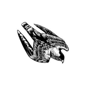 Projetos do logotipo do falcão