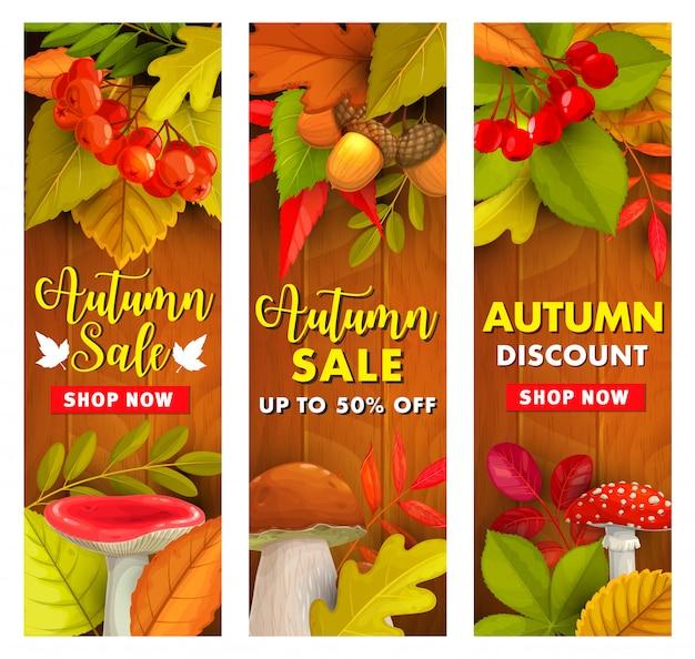 Promoção de outono, oferta de preço com desconto no outono