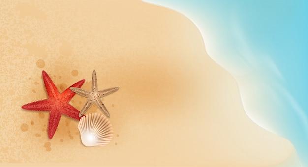 Promoção de venda de verão de elementos de estrela do mar e marisco compras, promoção de verão, férias na praia, estilo de vetor web modelo fundo banner web 3d