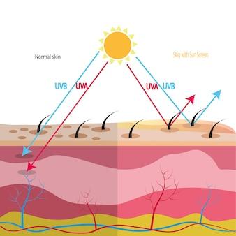 Proteção uv com pele celular
