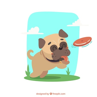 Pug feliz brincando com frisbee