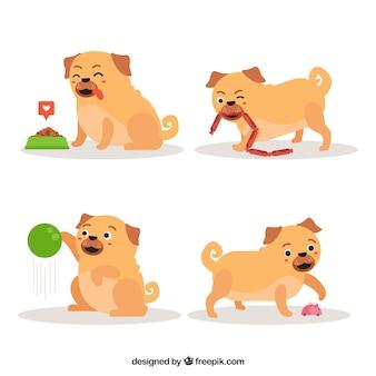 Pugs divertidos com estilo adorável