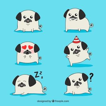 Pugs originais com estilo feliz