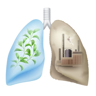Pulmões humanos vetoriais com folhas verdes e fábrica de produtos químicos