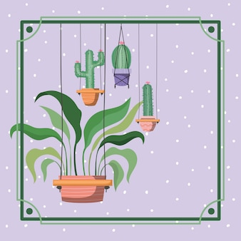 Quadro, com, houseplants, e, cacto, penduradas, em, macramê
