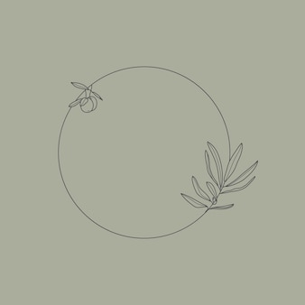 Quadro com ramo de oliveira com folhas e frutas em um estilo linear mínimo moderno. emblema do logotipo floral redondo do vetor para embalagens de óleo, cosméticos, alimentos orgânicos, convites de casamento e cartões comemorativos