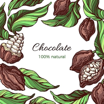 Quadro de cacau projeto da natureza fruta tropical folha de feijão ilustração desenhada à mão