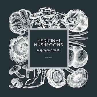 Quadro de cogumelo medicinal em um quadro-negro projeto de grinalda de plantas adaptogênicas esboçadas à mão