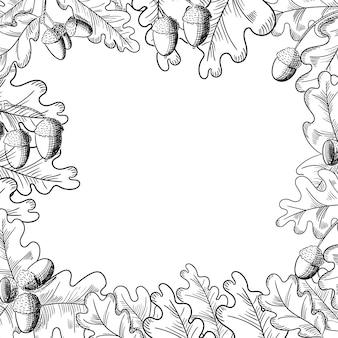Quadro de desenho de bolota e folha de carvalho de vetor
