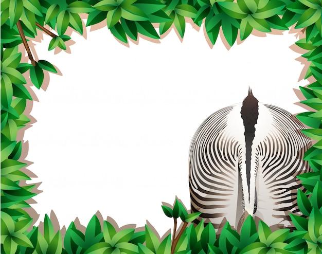 Quadro de folha com zebra