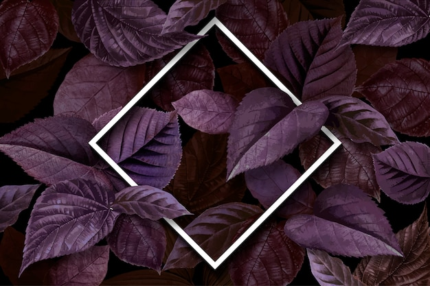 Quadro de folha de floresta