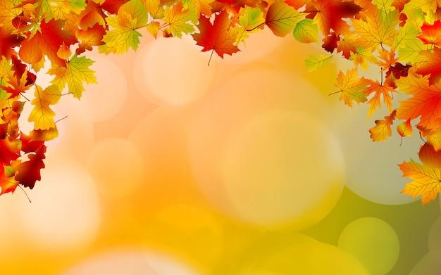 Quadro de folhas coloridas de outono.