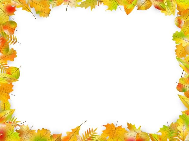Quadro de folhas de outono isolado no branco.