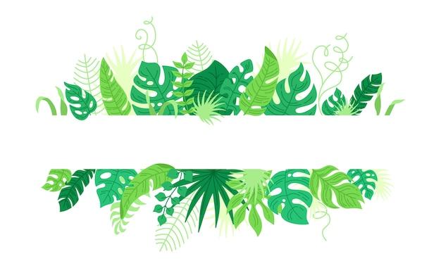 Quadro de folhas tropicais, estilo cartoon. fronteira de folhagem havaiana na moda com monstera.