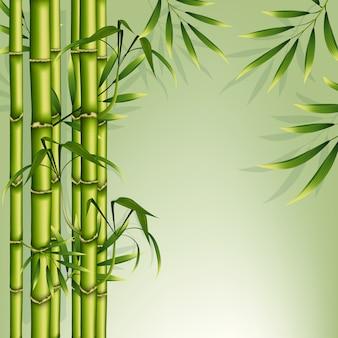 Quadro de fundo de bambu