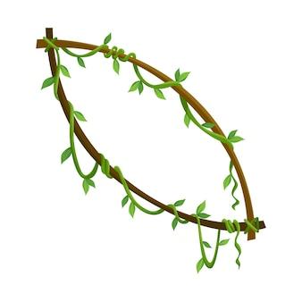 Quadro de liana tropical, galhos de plantas selvagens com folhas