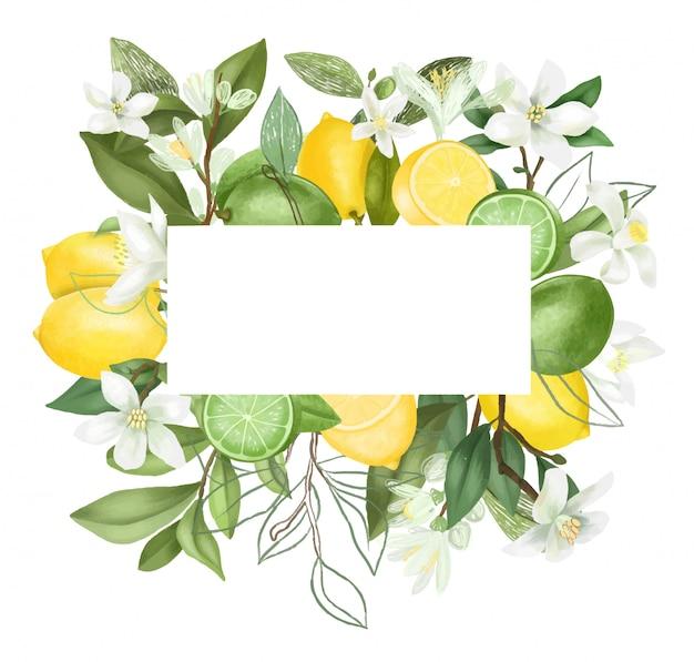 Quadro de mão desenhada florescendo galhos de árvores de limão