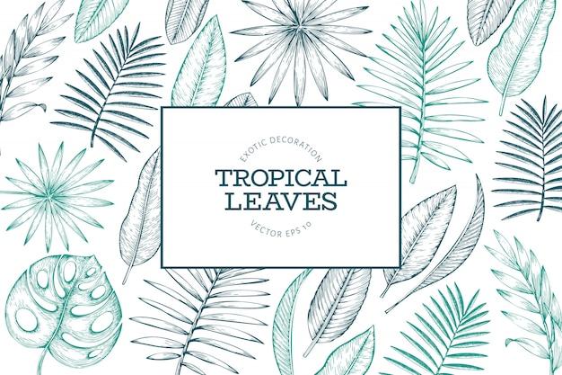 Quadro de plantas tropicais. ilustração de folhas exóticas de verão tropical mão desenhada. folhas de selva, folhas de palmeira estilo gravado. vintage