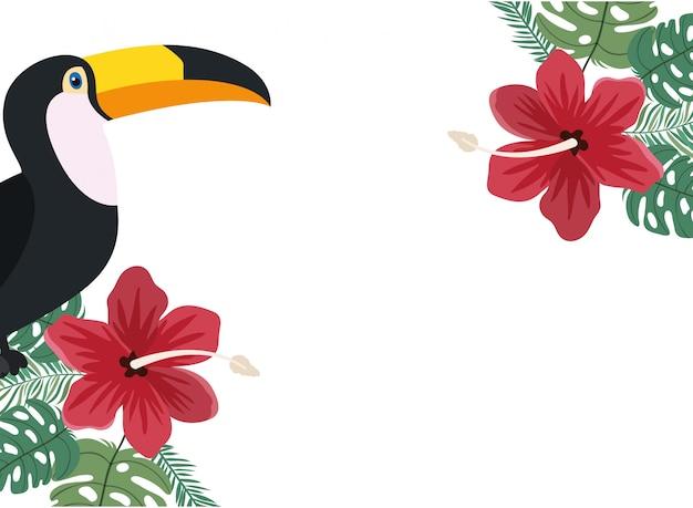 Quadro de tucano e flor de verão