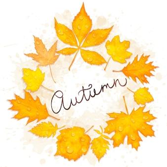Quadro de vetor de folhas de outono