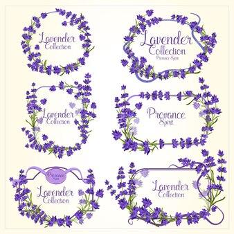 Quadro definido com flores detalhadas realistas de lavanda