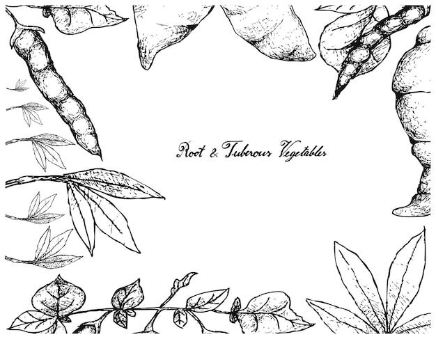 Quadro desenhado a mão de mandioca fresca e ahipa