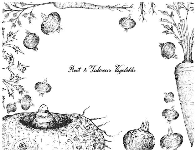 Quadro desenhado de mão de raízes e vegetais tuberosos
