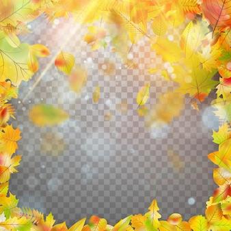 Quadro e bokeh de folhas de outono.