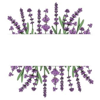 Quadro floral com flores de lavanda