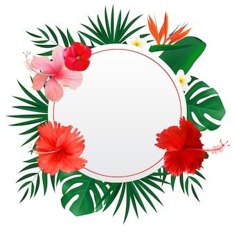 Quadro natural abstrato com flores exóticas de folhas de palmeira tropical e monstera isoladas