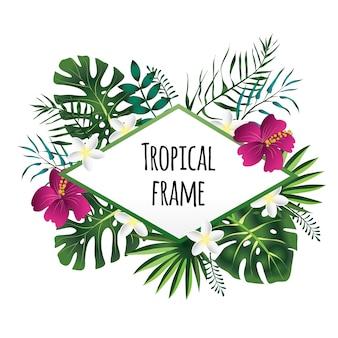 Quadro tropical losango, modelo com lugar para texto. , isolado no fundo branco.