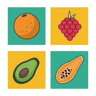 Quadros de frutas uvas de laranja papaia e abacate